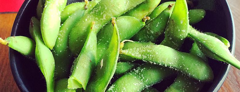 Vegetarian Delights - Starters